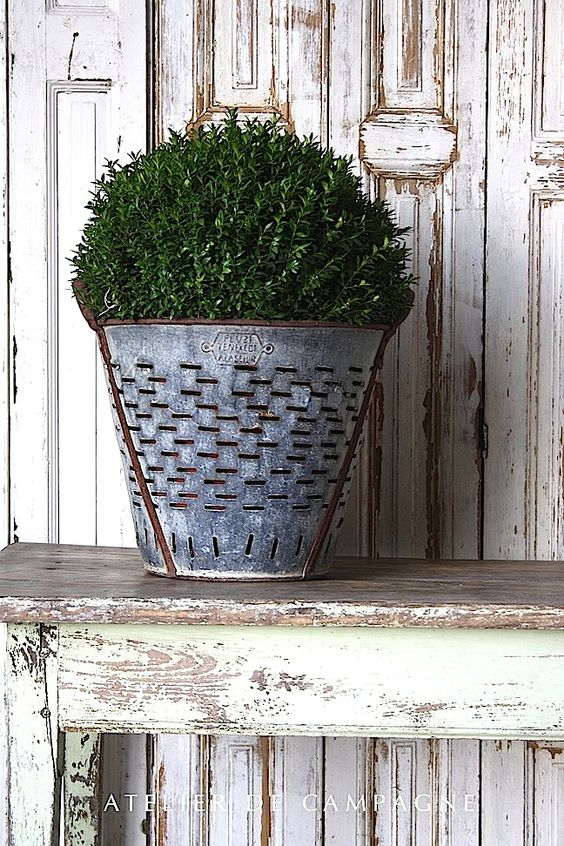 vintage-olive-bucket french farmhouse charming decor