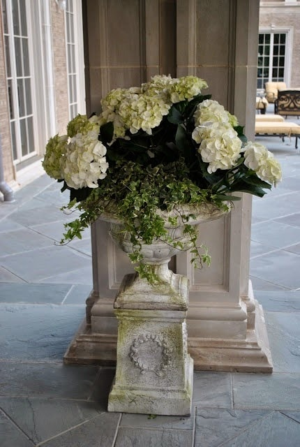 hydrangeas-white-antique-urn-gorgeous