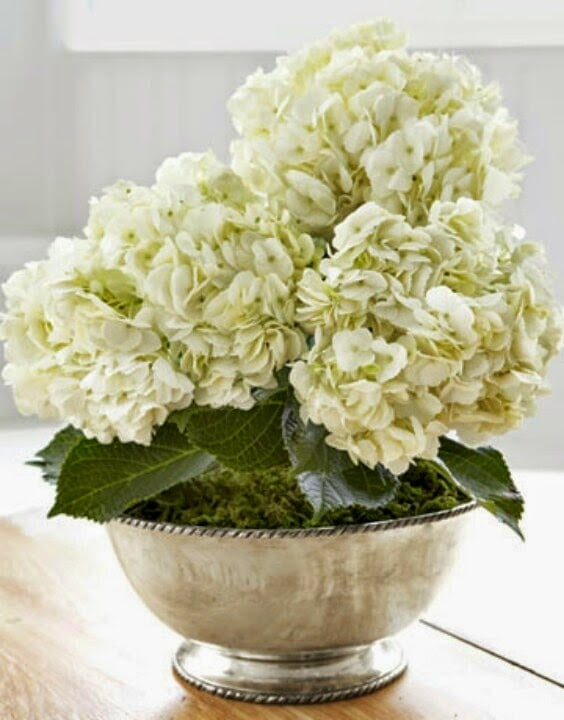 hydrangeas-white-silver-bowl