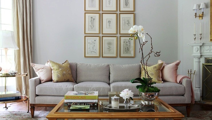 botanicals behind sofa grouping wall decor gallery wall chic living room