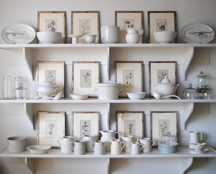 botanicals grouped behind white ironstone china collection on shelves