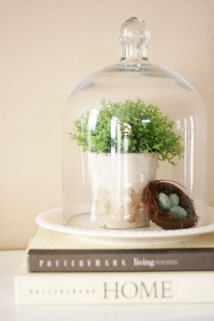 decorating cloches plant and birds nest under glass dome on books vignette farmhouse style
