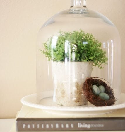 Friday Favorites – Decorating with Cloches