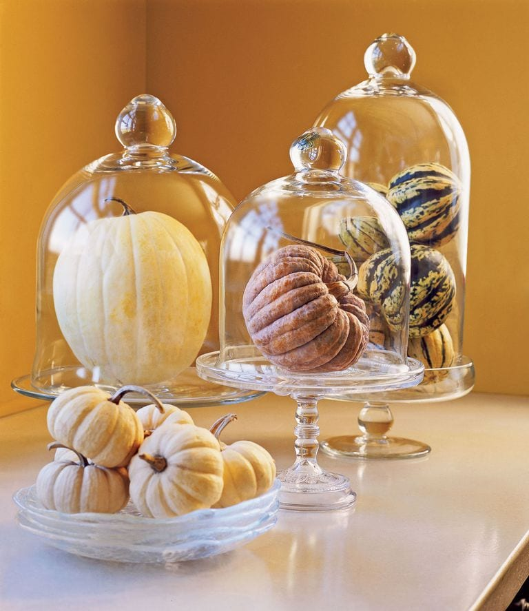 decorating cloches fall decor pumpkins under glass domes charming vignette