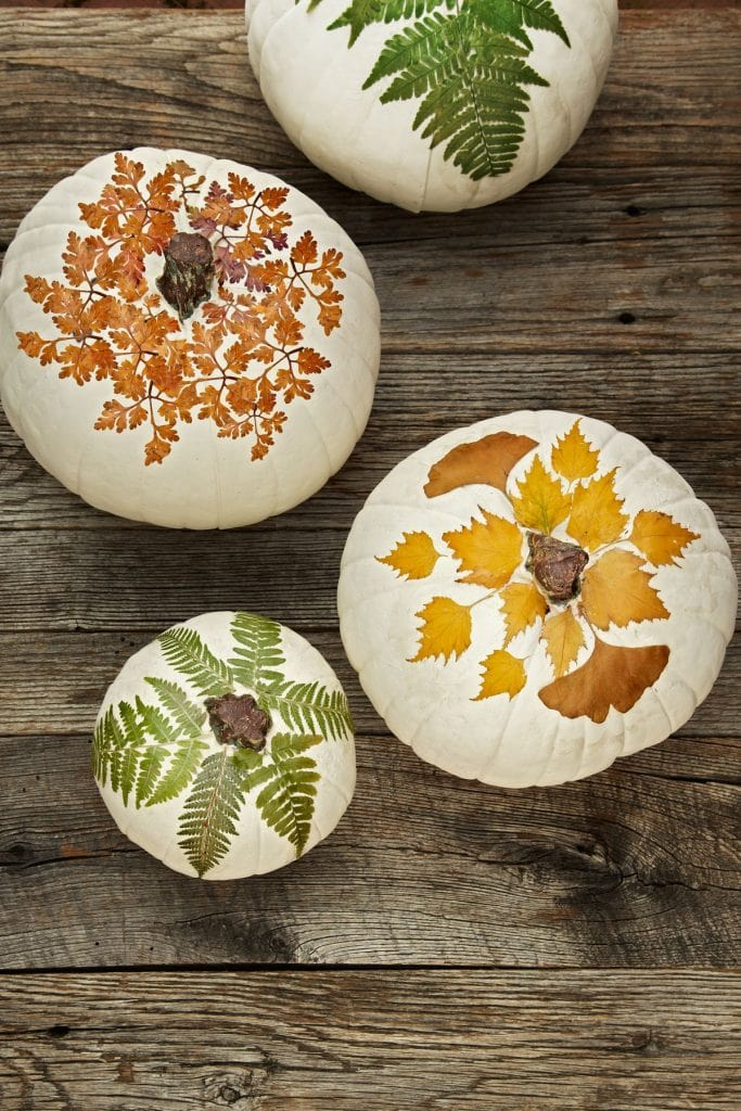 white pumpkins with decoupage leaves fall decor autumn decorating