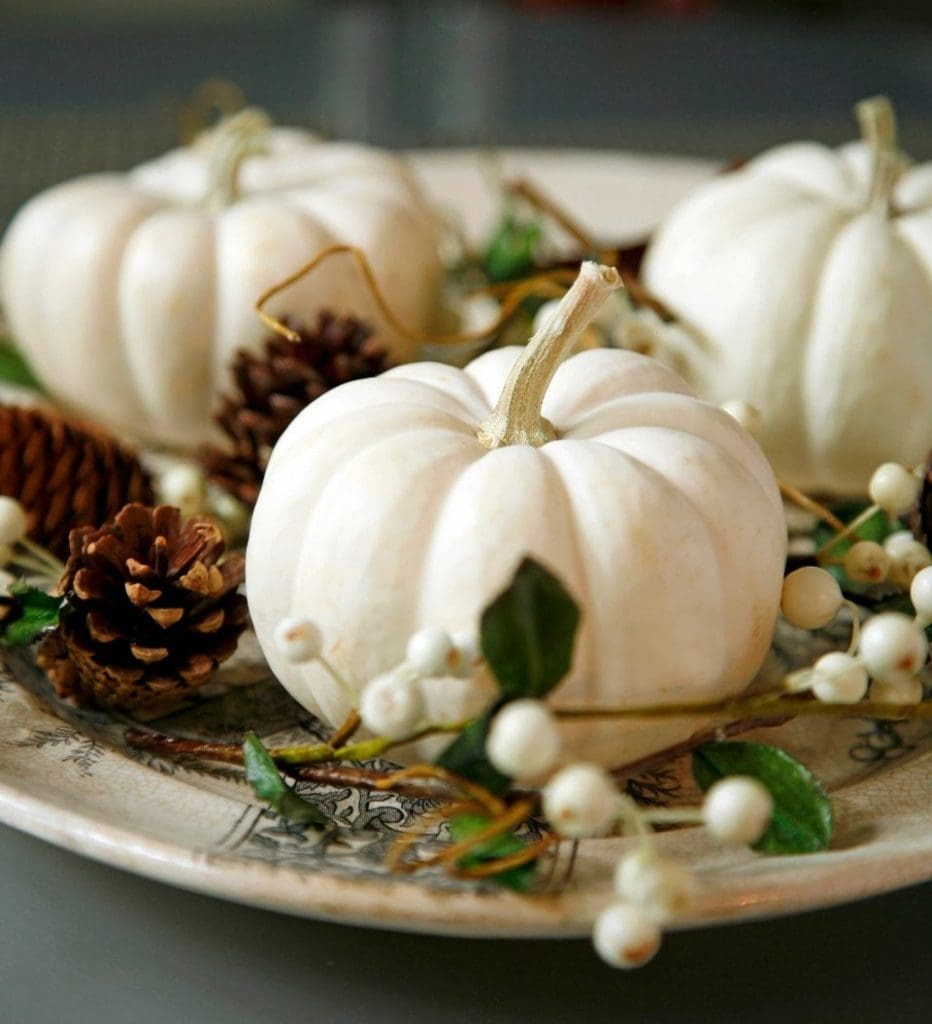 white pumpkins pinecones and white berries on plate fall autumn decor