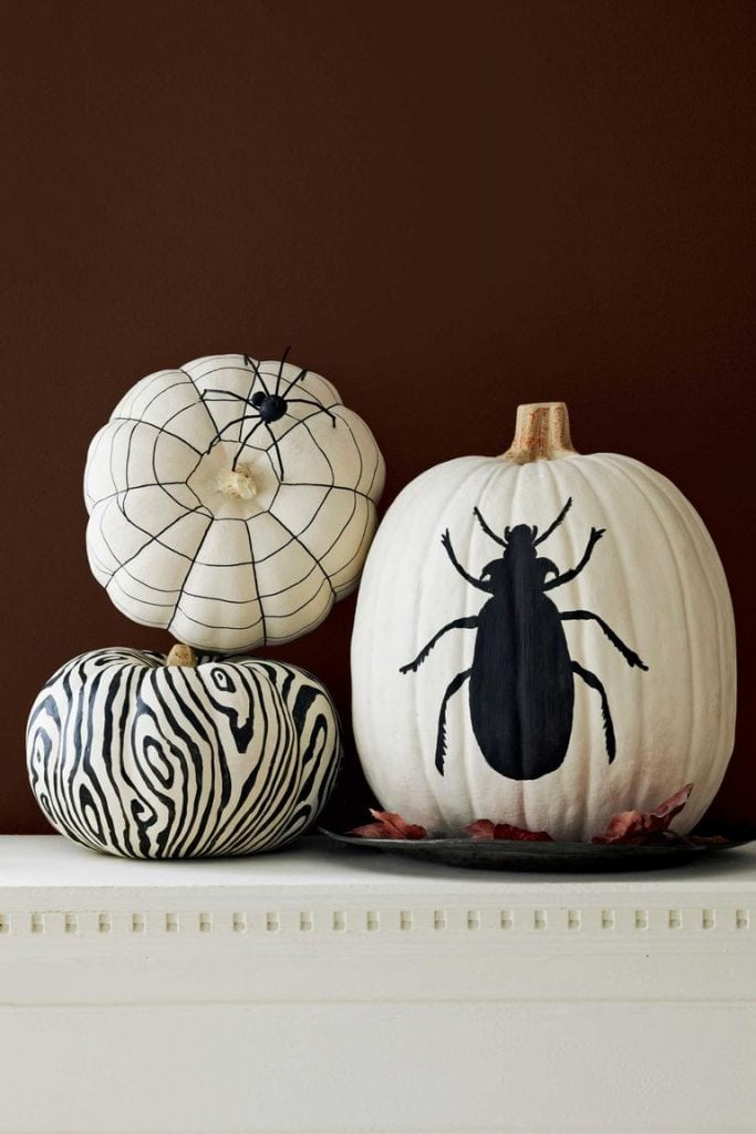 black and white halloween decor painted pumpkins