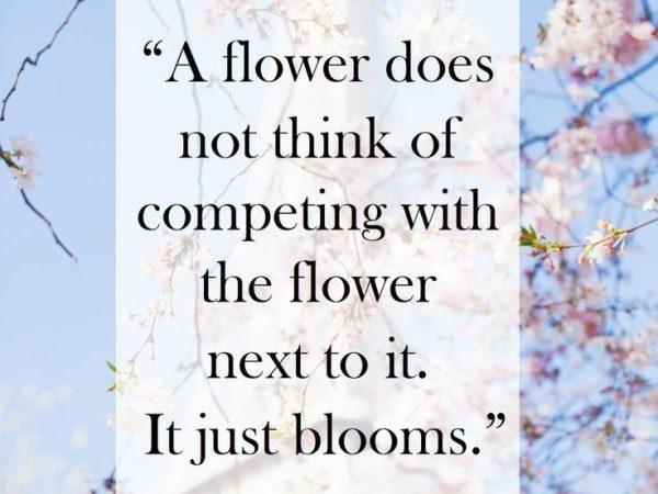 Thoughtful Sunday – Bloom
