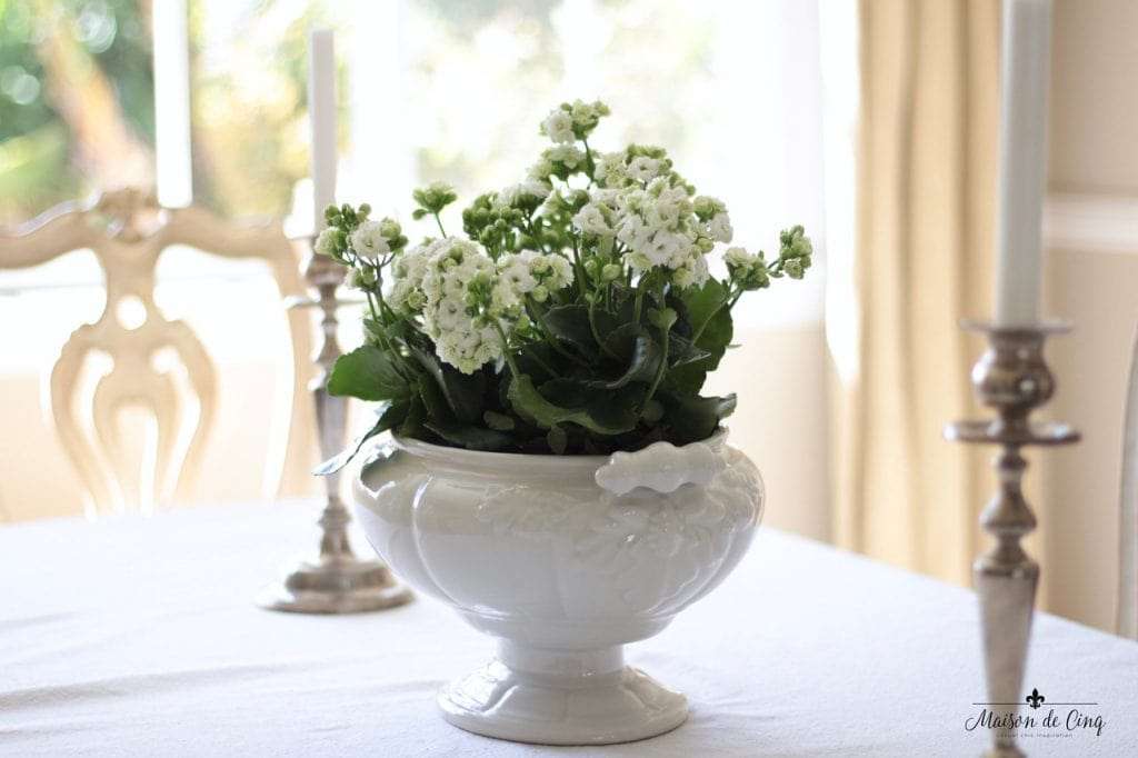 decorating with flowers blooming plant in white ironstone tureen dining room