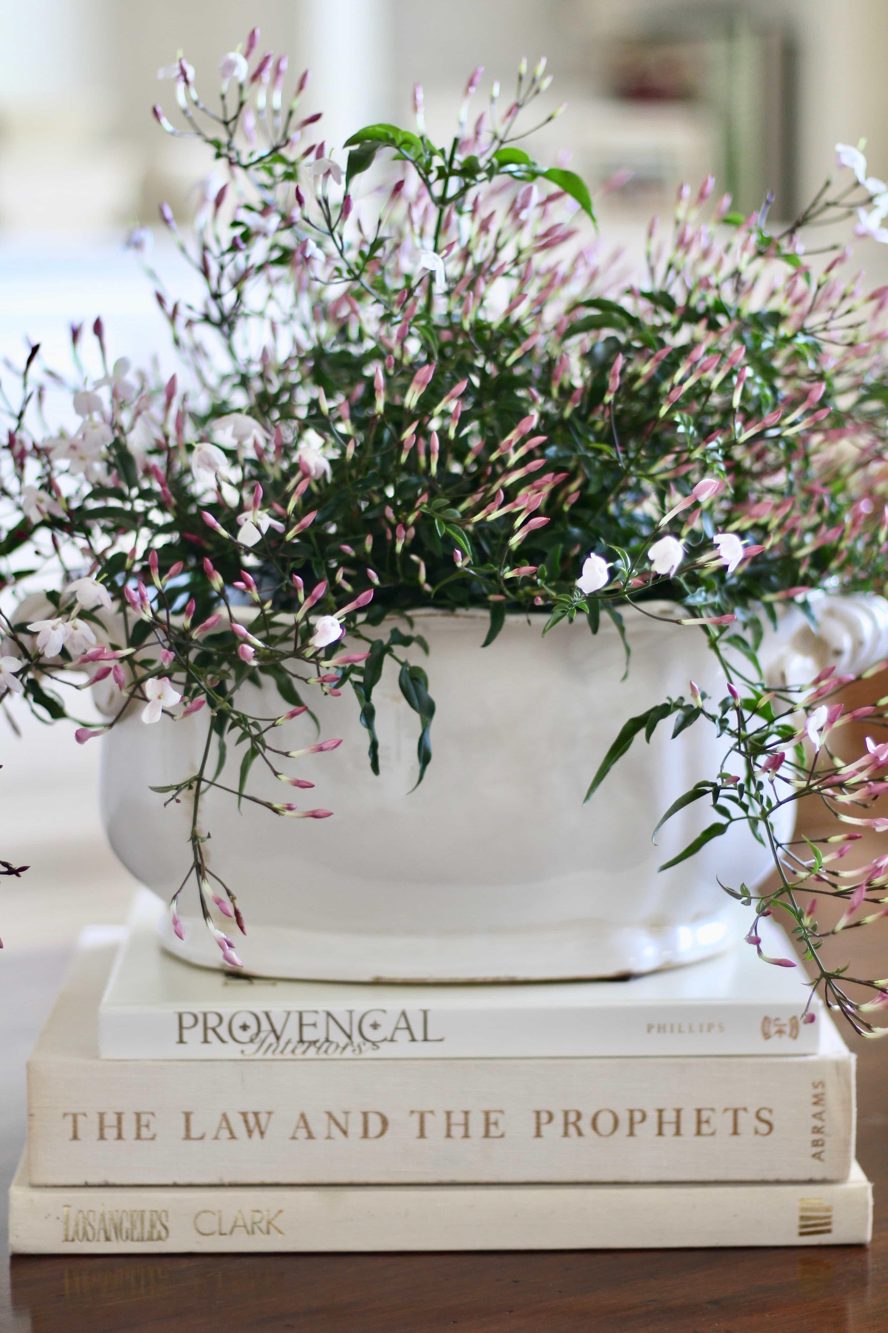 jasmine-decorating-flowers-coffee-table