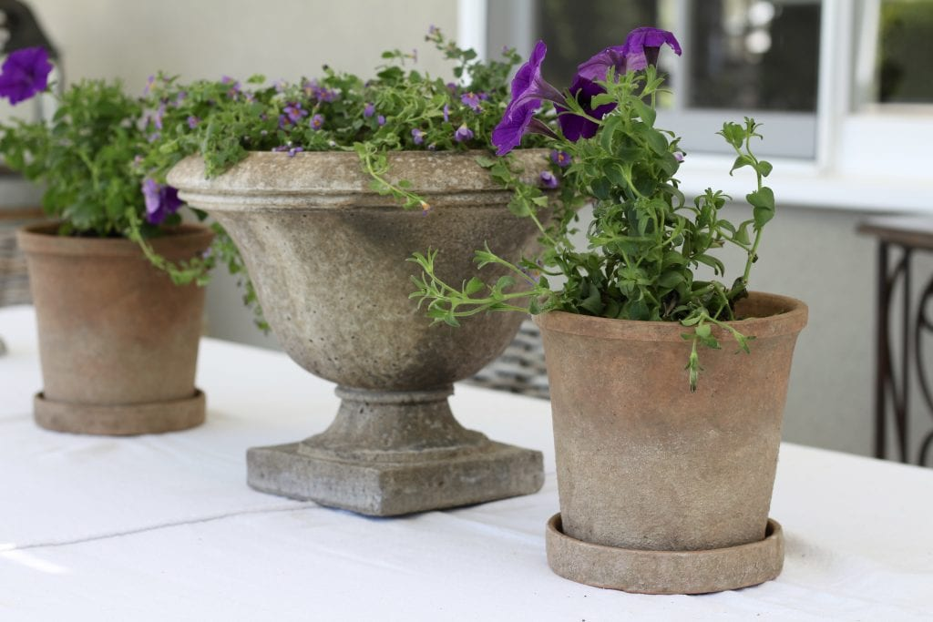 purple-flowers-distressed-pots-backyard-refresh