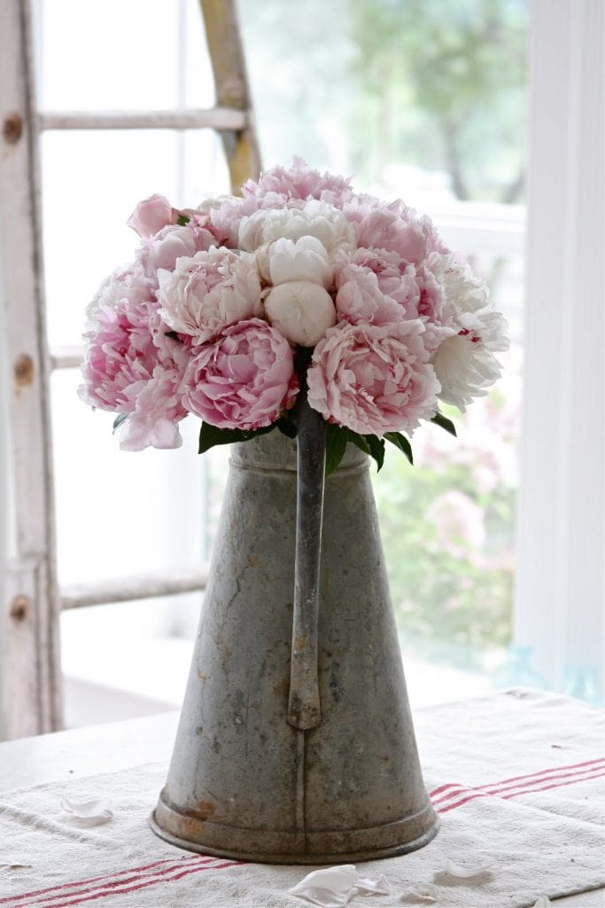 pink-peonies- french vintage zinc-pitcher farmhouse style