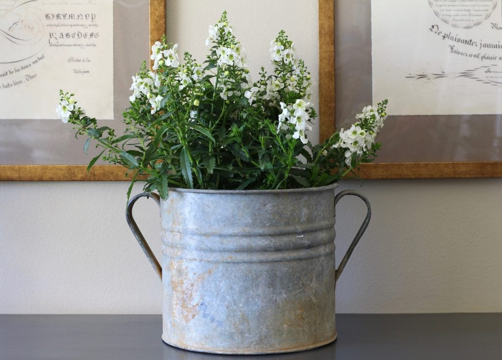 summer-home-tour-french-zinc-bucket-white-flowers