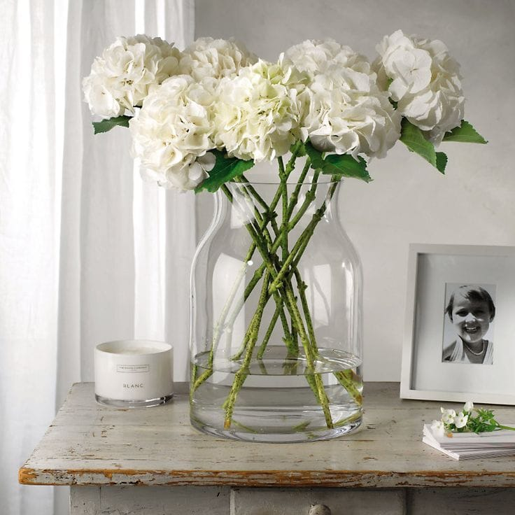 white hydrangeas clear glass vase simple stunning arrangement