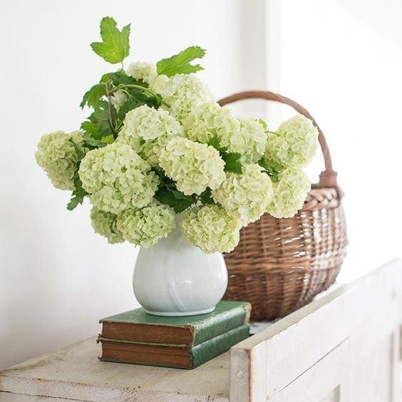 white hydrangeas ironstone pitcher with basket