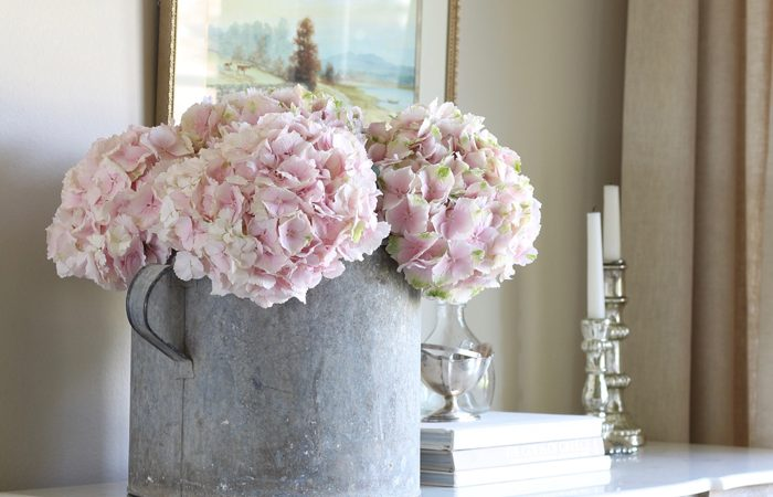 Six Tips for Making Cut Hydrangeas Last Longer