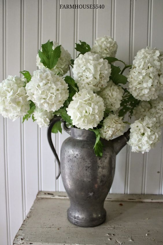 decorating with pewter charming pitcher hydrangeas