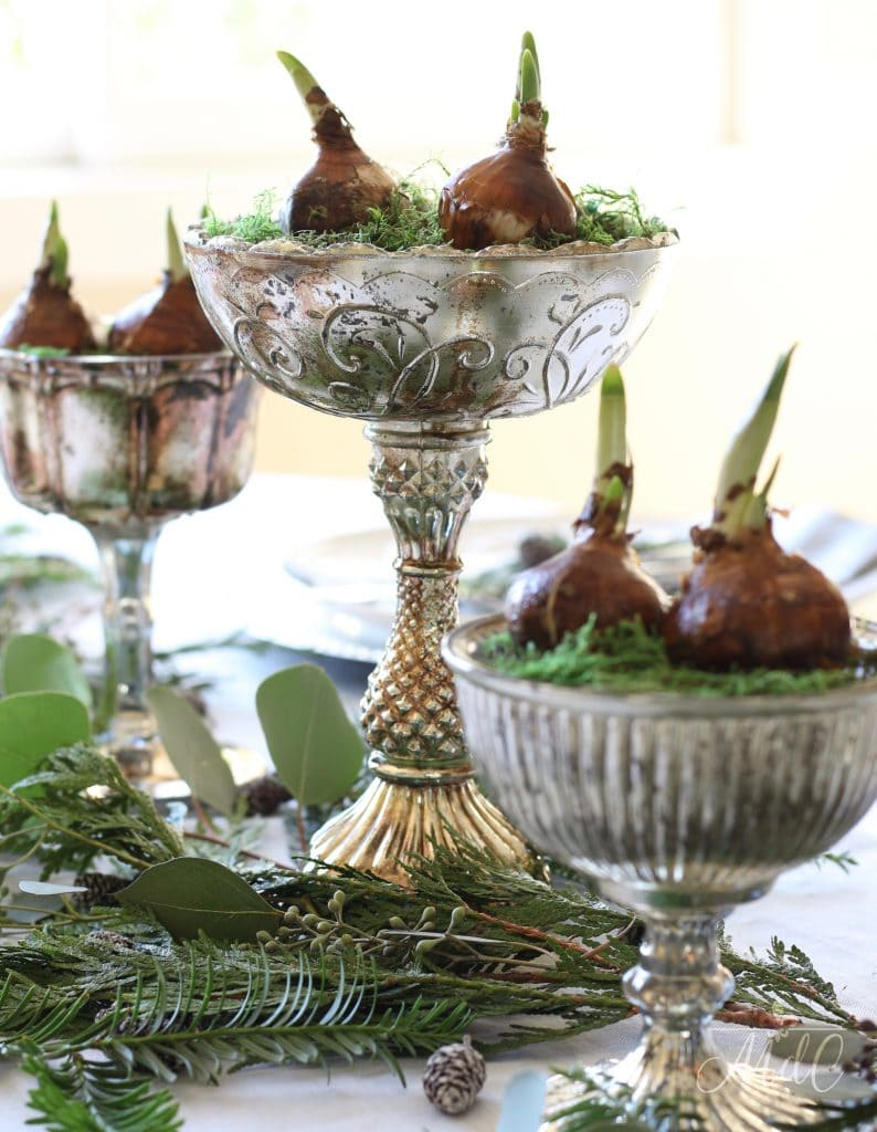 christmas tablescape paperwhites mercury glass pedestal bowls gorgeous greenery holiday table