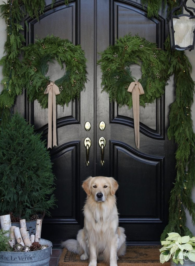 christmas front porch black doors wreaths golden retriever dog gorgeous