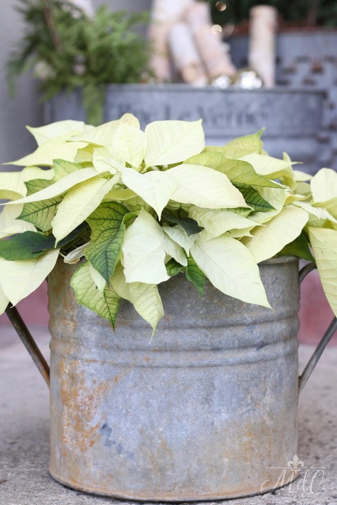christmas front porch poinsettias vintage bucket holiday decor