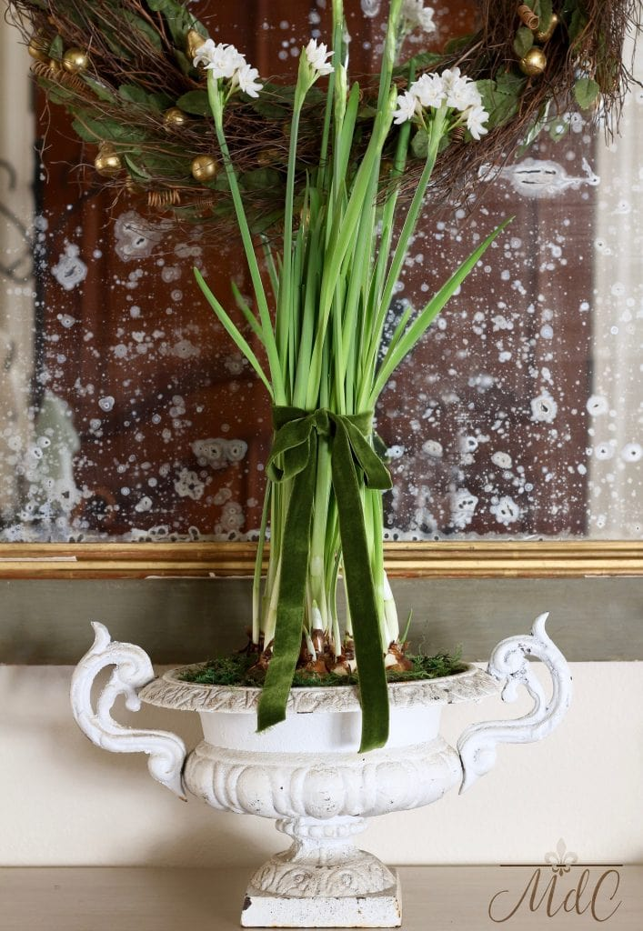 christmas entryway vintage french urn with paperwhites green ribbon gorgeous christmas decor