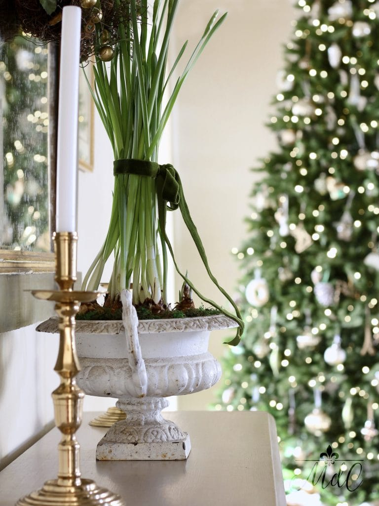 christmas entryway tree lights gorgeous holiday decor paperwhites
