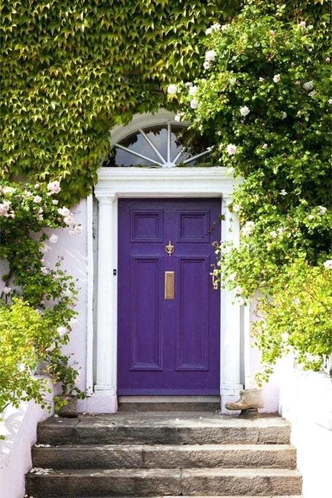 violet pantone color of the year charming gorgeous purple door vines