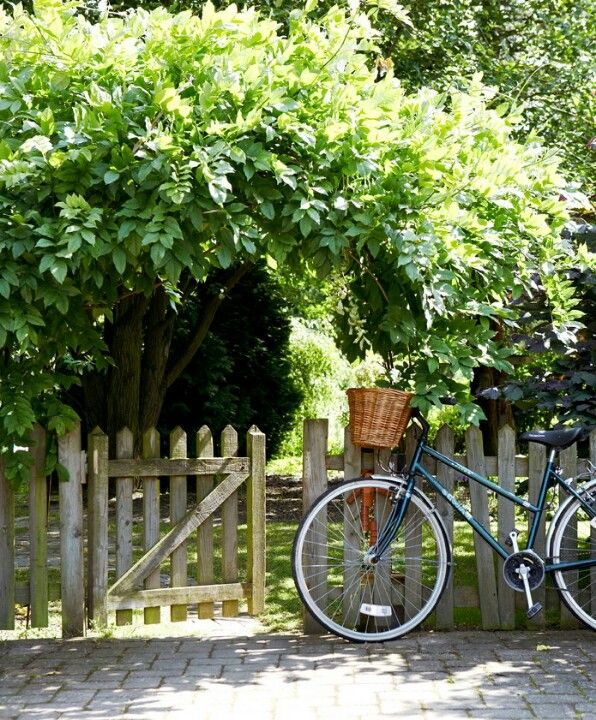 sundays at home link party kindness bike trees picket fence