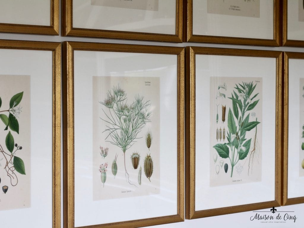 antique botanicals vintage look gold frames green color palette gorgeous artwork prints