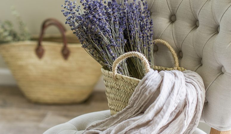 French Country Fridays – Rug Tips, a Bathroom Remodel, French Dinners, and More!