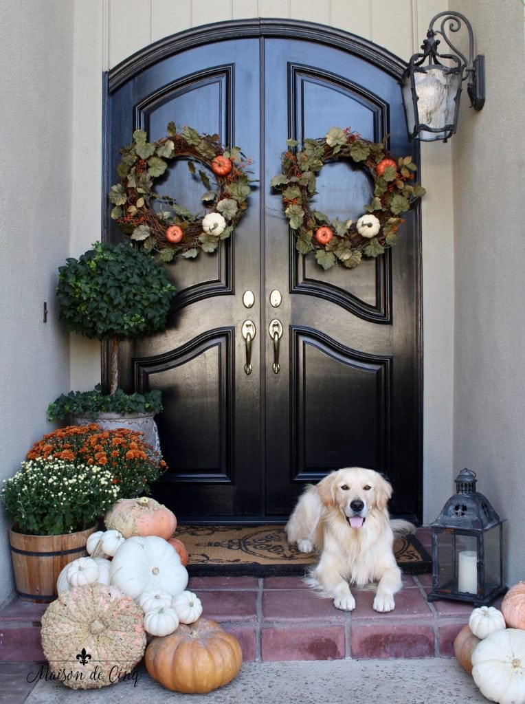 fall front porch black doors pumpkins mums and golden retriever lying down