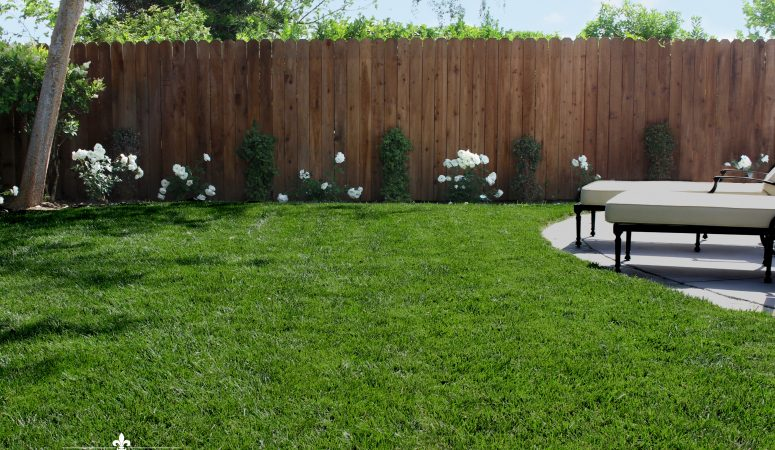 New Landscaping and a New Yard – Landscape Remodel Reveal