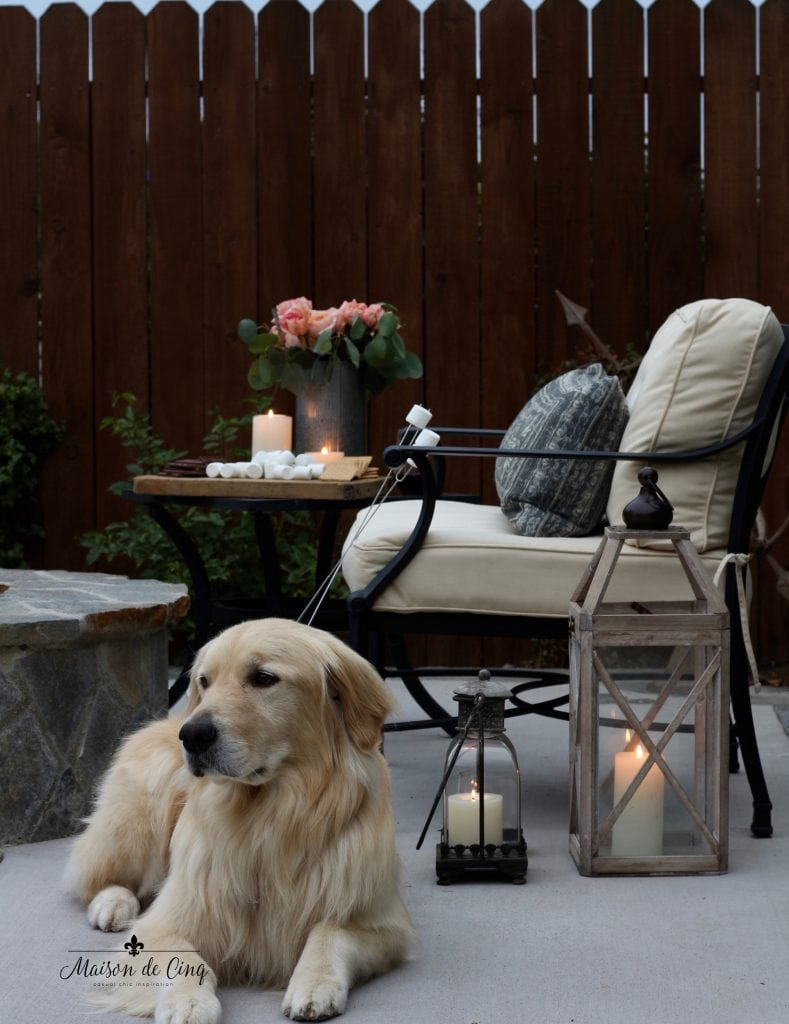 summer outdoor entertaining chairs lanterns s'mores by the fire with golden retriever dog