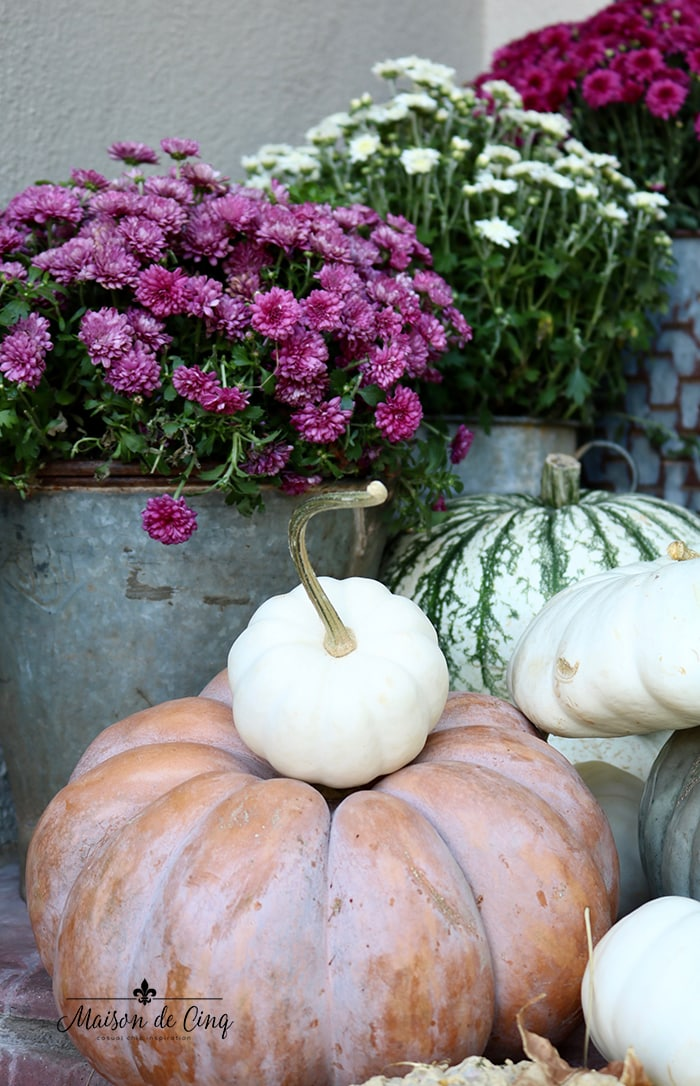 pink and white mums with white and Cinderella pumpkins
