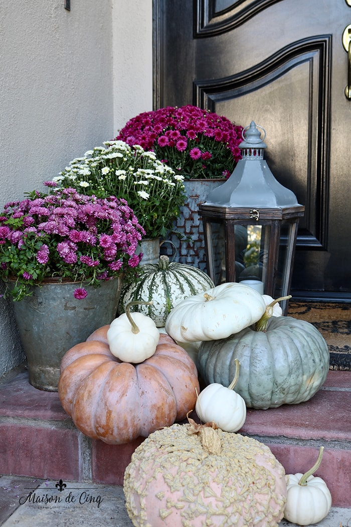 gorgeous pink mums with pumpkins and lantern fall porch decor