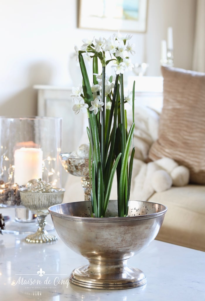 winter flowers paper whites in silver bowl decorating ideas after christmas