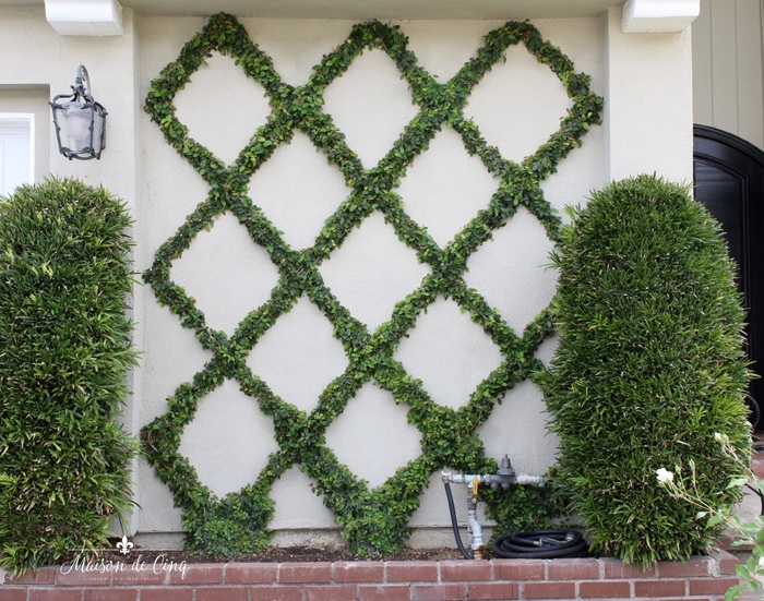 gorgeous belgian fence diamond pattern espalier on front of home