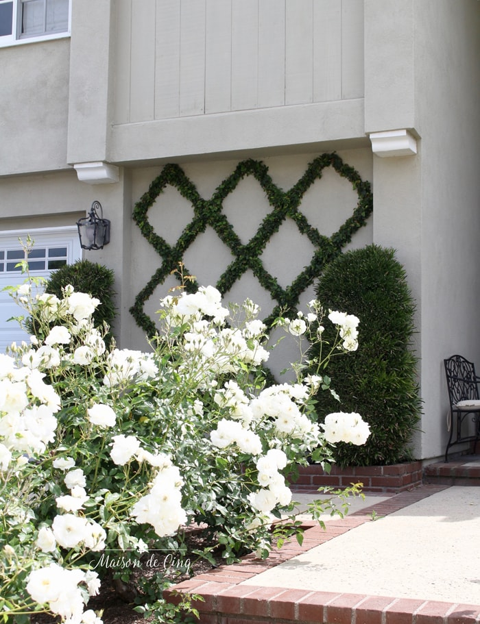 espalier on wall of front of house charming european landscaping