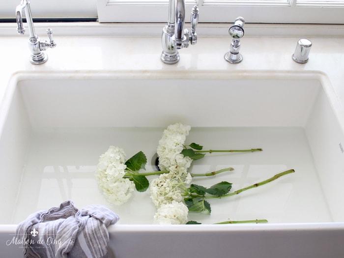 how to make cut hydrangeas last longer soak in sink to revive them