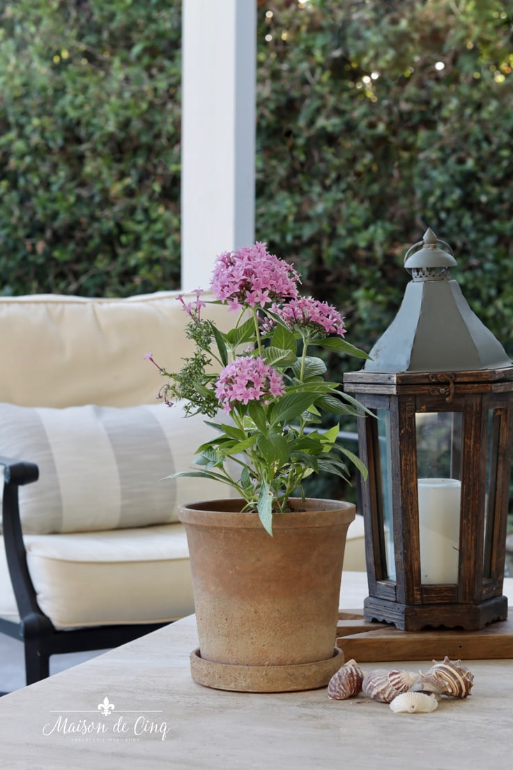 pretty pink flowers in planter with Pottery Barn lantern French style patio decor