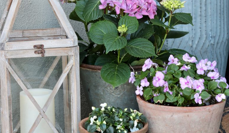 How to Decorate a Spring Front Porch: Freshening up for Spring
