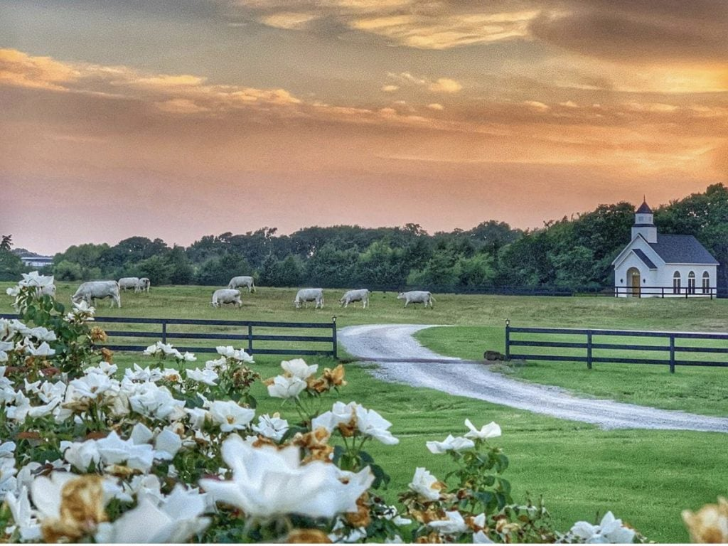 stunning farm property beautiful skies with cows grazing in pasture