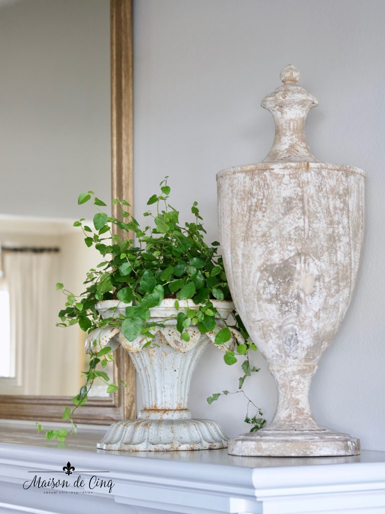 creeping fig in gorgeous French country antique cast iron planter