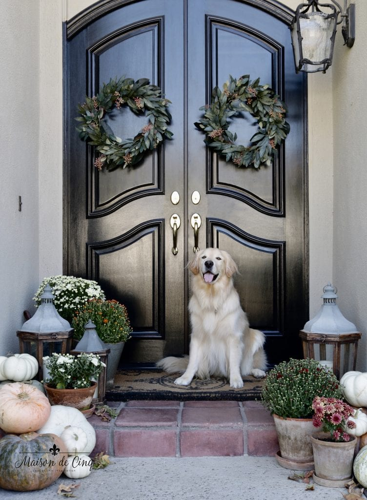 gorgeous fall porch decor door with wreaths and golden retriever cute autumn decorating